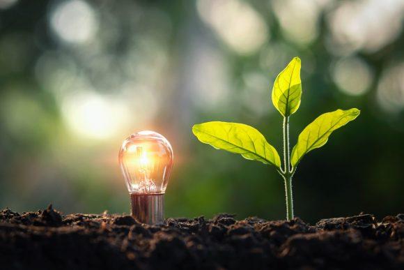 Encuesta: ¿La energía verde es para ti?